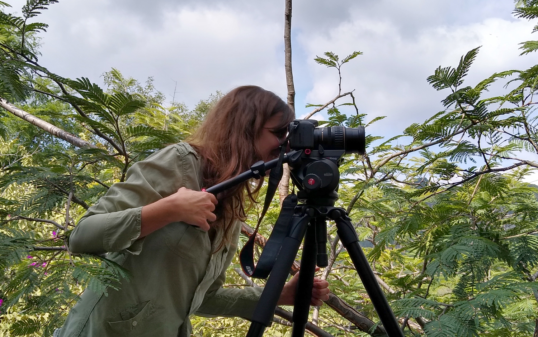 Fotógrafa, Editora, Creativa.